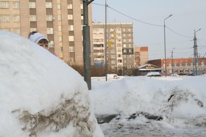 Фото: cherinfo.ru