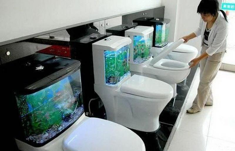 Фото: aquafanat.com.ua