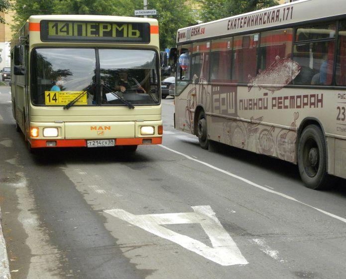 На рынке автобусных перевозок в Перми представлено 75 компаний. Фото: gorodperm.ru