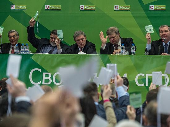 Фото: пресс-служба партии «Яблоко»